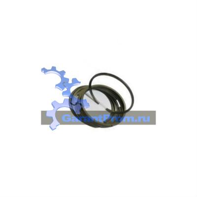 Кольца ТКР-11Н3 111.3012300.00 на ЧТЗ